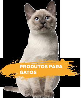 Produtos para gato dogchoni
