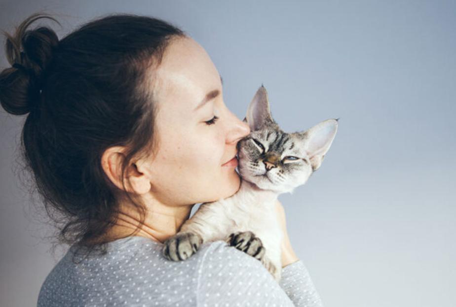 como-seu-gatinho-diz-que-te-ama