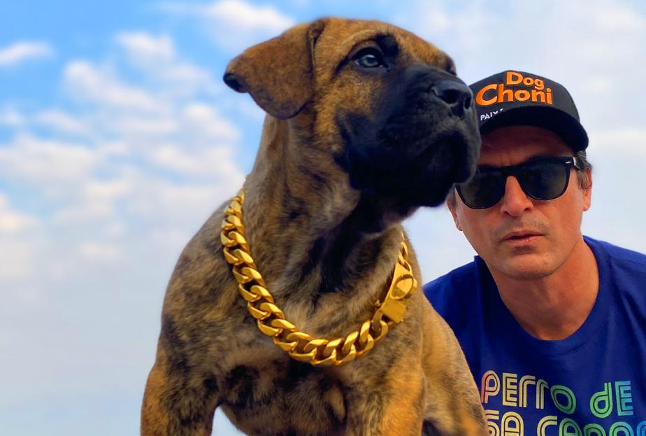 dogchoni-e-eleita-melhor-nutricao-pelo-cane-club-kennel