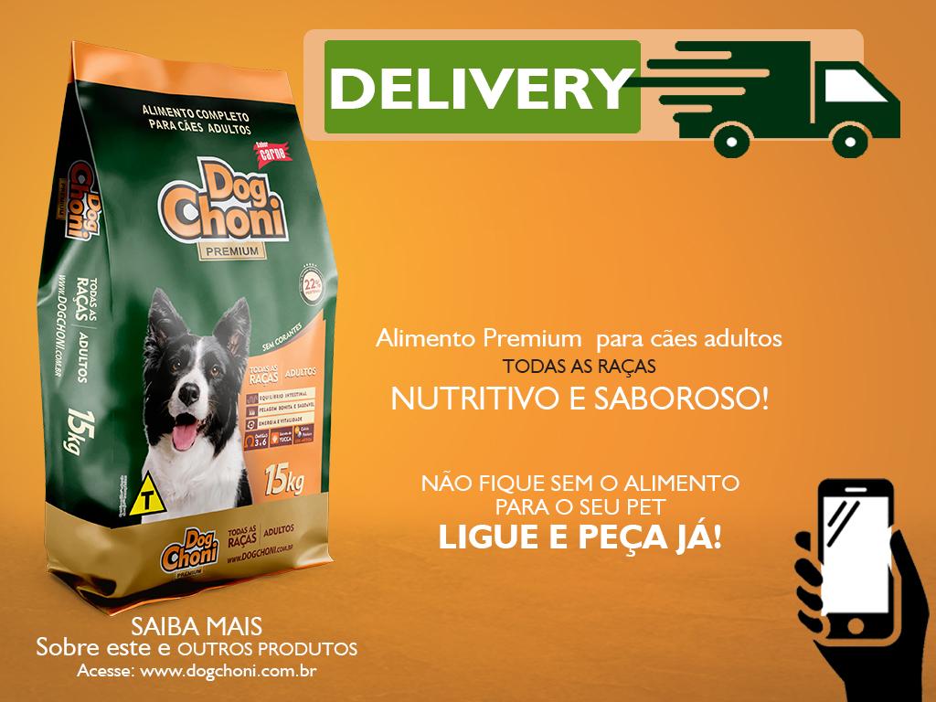 Delivery Dogchoni Adulto