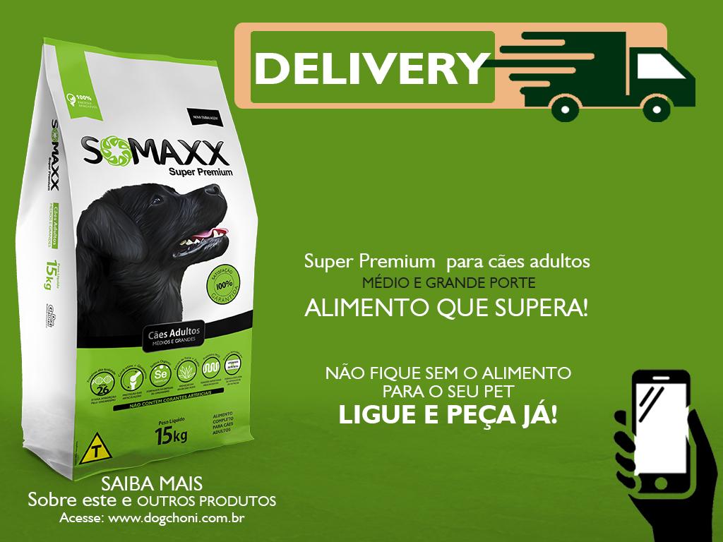 Post Delivery Somaxx Super Premium Caes Adultos