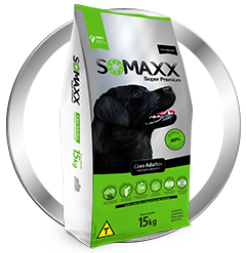 DogChoni Somaxx Super Premium Cães Adultos
